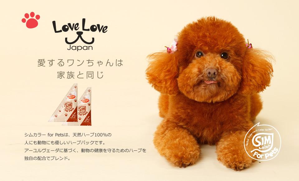 LoveLoveジャパン